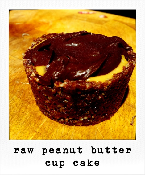 roidizer_1359341779845_raw peanut butter cup cake