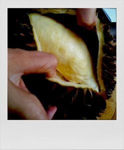 birthing the durian